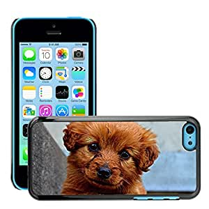 Super Stella Slim PC Hard Case Cover Skin Armor Shell Protection // M00147815 Animal Dog Puppy Cute // Apple iPhone 5C