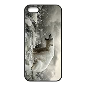 Iphone 5,5S Polar bear Phone Back Case Use Your Own Photo Art Print Design Hard Shell Protection TY040756
