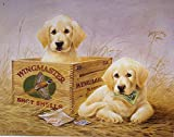 vintage advertisement - Wingmaster Shot Shells Hunting Dogs Tin Sign 13 x 16in
