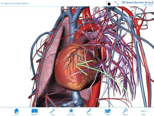 Visible Body 3d Human Anatomy Atlas 2 Download Import It All