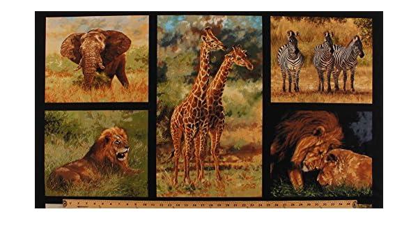 Sale Inprint 100/% Cotton Fabric Stripey Savannah Zebra Animals