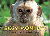 Busy Monkeys (A Busy Book)