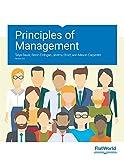 Principles of Management v3.0