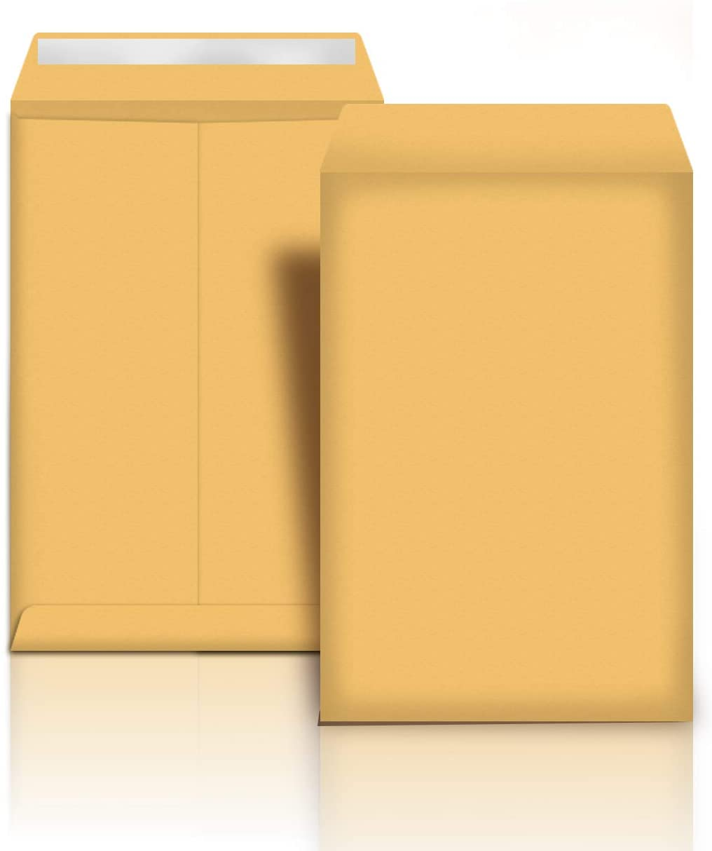 AmazonBasics Catalog Mailing Envelopes, Peel & Seal, 9x12 Inch, Brown Kraft, 100-Pack - AMZP13