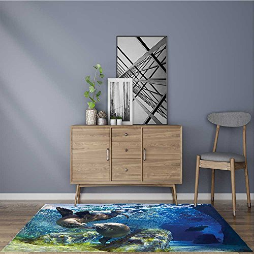 Living Dining Room Bedroom Rug Sea Playful California Sea Lions Swimming in Clear Water Undersea Themeation Lime Non Slip Absorbent Carpet W35.5 x L47 (Lifestyle California Living Room Table)