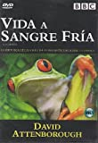 VIDA A SANGRE FRIA VOL. 1 (LIFE IN COLD BLOOD)