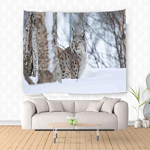 Nalahome Animal European Lynx Snowy Cold Forest Norway Nordic Country Wildlife Apex Predator Light Brown White Ethnic Decorative Tapestry Blanket Wall Art Design Handicrafts 36W x 24L Inches