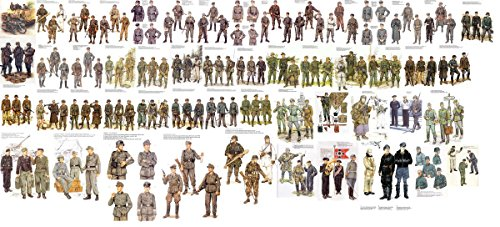 Gifts Delight Laminated 53x24 Poster: WWII Uniforms 13 by FVSJ WW2 General History, Ww2 Uniforms and German Uniforms