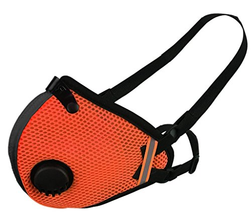 RZ Dust/Pollution Mask Bonus Pack w/5 Laboratory Tested Filters, Model M2.5, Mesh, Safety Orange, Size Large by RZ Mask (Image #1)