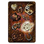 STEAMPUNK TEA LEAF FORTUNE TELLING CARDS (45 bronze gilt-edged cards w/guidebook, boxed) 7