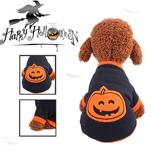 Halloween Costumes Designer Education - Halloween Thanksgiving Designer Dog Costumes,Halloween Pet