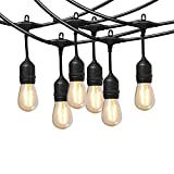 Cooolight 12 Volt String Lights with Hanging Sockets-Commercial Grade, Waterproof, Low Voltage, Extendable Light Stands with 12 Volt LED Edison Bulb for Cafe, Bistro,Patio and Deck (NO Transformer)