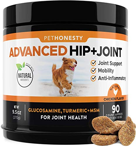 Glucosamine for Dogs Dog