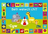 img - for Beth Welwch Chi? Cyw (Welsh Edition) book / textbook / text book