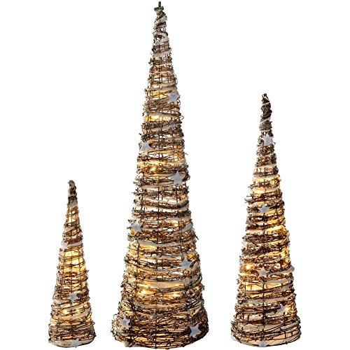 Cone Tree - 1
