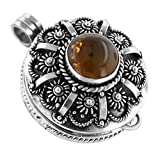 Sterling Silver Pressed Baltic Amber Poison Locket Pendant for Herbs or Prayers