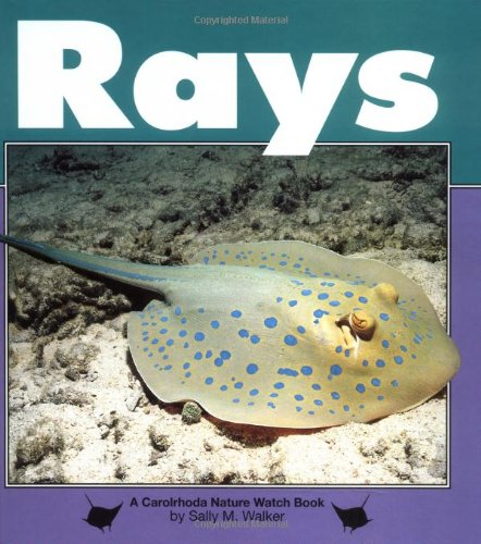 Rays (Nature Watch)