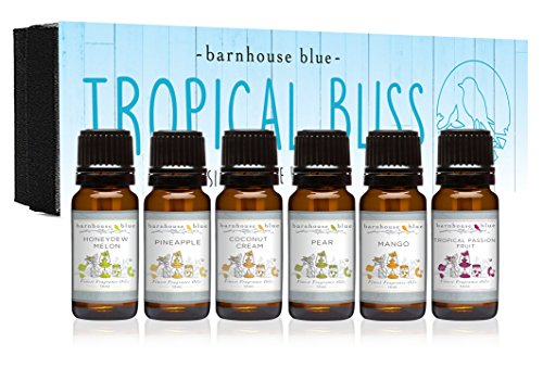 Premium Fragrance Oils - Tropical Bliss - Gift Set 6/10ml Bottles - Coconut Cream, Honeydew Melon, Mango, Pear, Pineapple, Tropical Passionfruit Candle Ring Cream