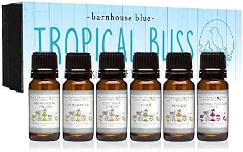 Premium Fragrance Oils - Tropical Bliss - Gift Set 6/10ml Bottles - Coconut Cream, Honeydew Melon, Mango, Pear, Pineapple, Tropical Passionfruit