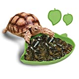 Zyurong Leaves Shape Plastic Reptiles Water Bowl