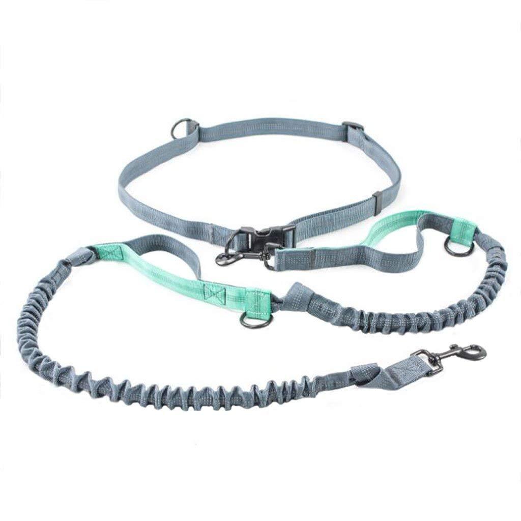 HSDDA Dog Outdoor Leash Dog leash Pet Chain Nylon Braid Multi-Function Adjustable Reflective Fashion Soft Comfortable and Durable(Grey) Walking Leash