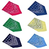 HDE 6-Pack Assorted 100% Cotton Bandanas Paisley Print - Best Reviews Guide