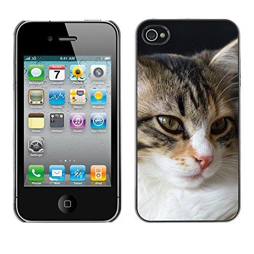 Premio Sottile Slim Cassa Custodia Case Cover Shell // F00013352 chat // Apple iPhone 4 4S 4G