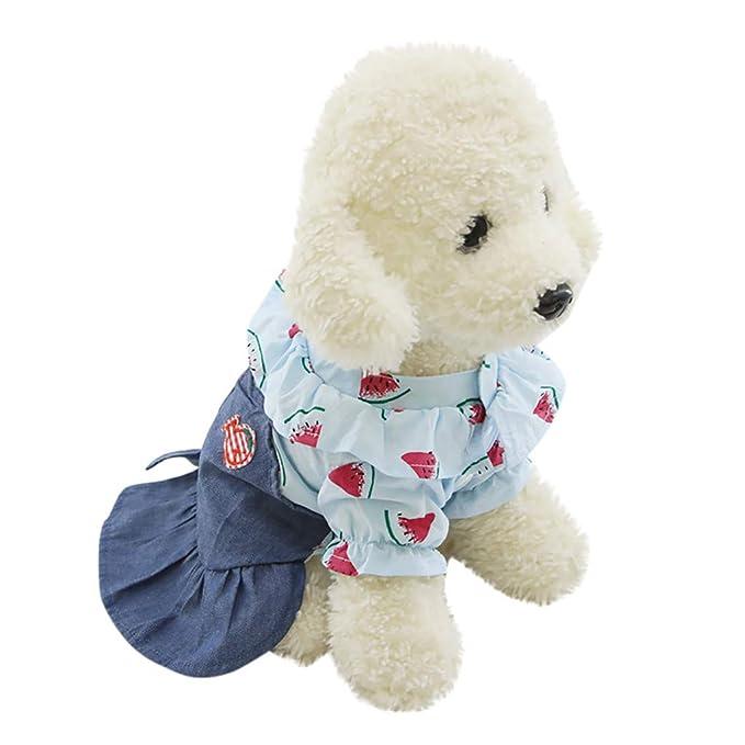 Amazon.com: Sayhi - Vestido con botones para mascotas, gatos ...