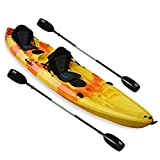 Nixie Sports 13ft Sit On Top Tandem Fishing Kayak With Backrests - Inc 2 Paddles (500 pound weight capacity)