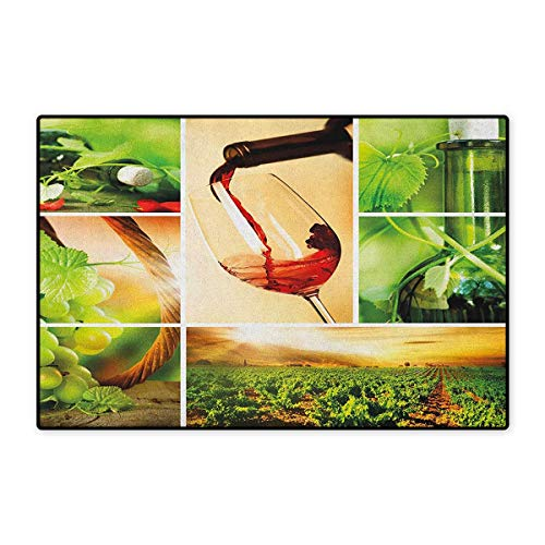 Wine,Door Mats Carpet,Wine Tasting and Grapevine Collage Green Fresh Field Pouring Drink Delicious,Door Mats for Inside Non Slip Backing,Green Ruby Caramel,Size,24