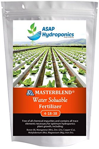 Hydroponic, Tomato, Pepper, Fertilizer 1LB by eDealzzz (Best Fertilizer For Tomatoes And Peppers)