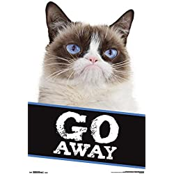 Grumpy Cat- Go Away Poster 22 x 34in