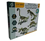 CLUB GENIUS FF253 4 Pack Dinosaurs Skeleton Excavation Kit Set (4 Piece), Fossil Block Is White, Tools Is Brown Color, 7.4'' x 2.5'' x 6.2''
