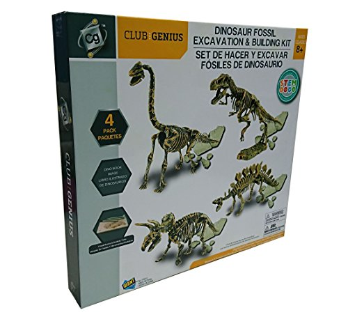 CLUB GENIUS FF253 4 Pack Dinosaurs Skeleton Excavation Kit Set, Fossil Block is White, Tools is Brown Color, 7.4
