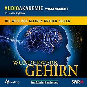 Wunderwerk Gehirn. Die Welt der kleinen grauen Zellen Hörbuch