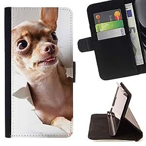 Momo Phone Case / Flip Funda de Cuero Case Cover - Chihuahua Oro Brown Dog monedero Tiny; - LG Nexus 5 D820 D821