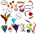 Cat Toys - Cat Feather Toys - 20 pieces, Retractable Cat wand and Natural Feather Refills and other Cat Toys by Ecocity Pet Supply (24 pieces)