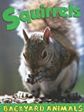 Squirrels, Lauren Diemer, 1590366727