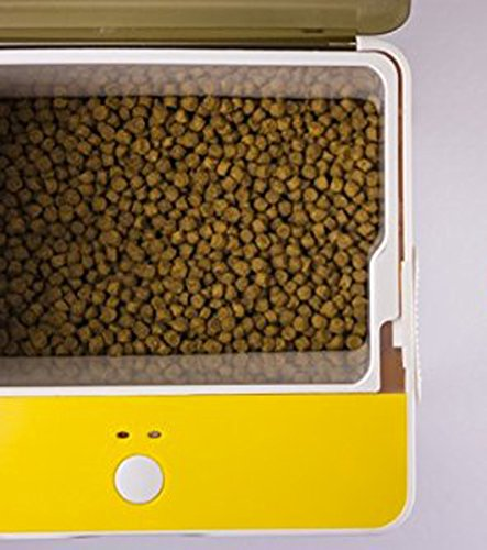 Amazon.com : B-Part Alimentador Automatico para Mascotas con Camara controlado con Smart Phones via App Wifi : Pet Supplies
