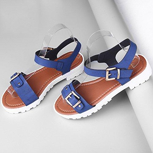 LvRao Women Summer Casual Flip-flop Flatform Sandals classic Buckle Beach Shoes Blue 1DdBFXvDS