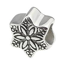 Beads Hunter Jewelry Bead Charm Mix Theme Fit 3mm Pandora Chamilia Biagi & European Bracelets (Snowflake)