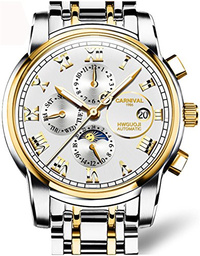 Mens Automatic Mechanical Wrist Watch Multi-Function Dial Moon Phase Watch (Gold White)