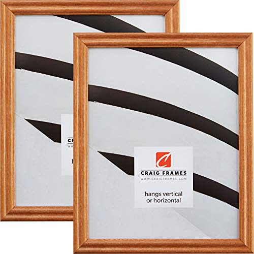 - Craig Frames 200ASH105 16 x 20 Inch Picture Frame, Natural Brown, Set of 2