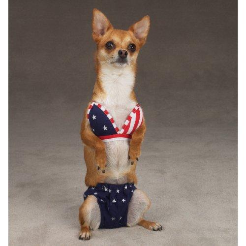 Esc All-American Bikini Sm, My Pet Supplies