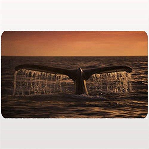 Monterey Entrance - AlliuCoo Custom Welcome Doormat Humpback Whale Dives Into Waters Monterey Animals Wildlife Nature Floor Entrance Rug 18X30 Inches Indoor/Outdoor/Front Door Bathroom Mats Rubber Non Slip