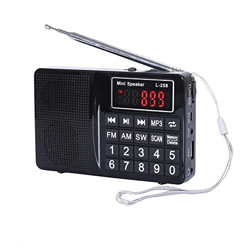 LCJ Portable FM AM Shortwave Multiband Radio Receiver with Micro TF Card and USB Driver MP3 Player USB Charging Cable 1000MAH Rechargeable Li-ion Battery (L-258-Black)