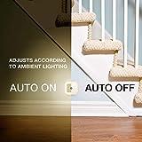 Vont LED Night Light (Plug-in), Smart Dusk to
