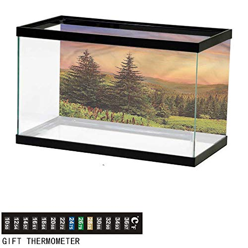 bybyhome Fish Tank Backdrop Forest,Fir Trees Pines Spruce Hills,Aquarium Background,48