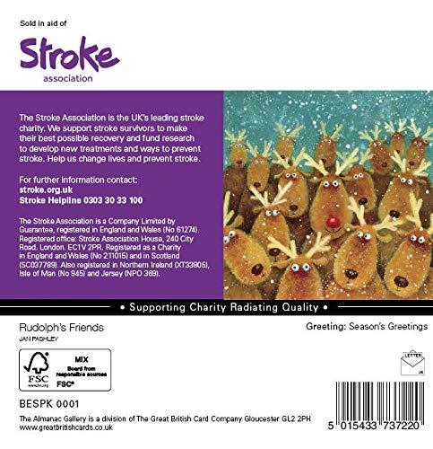 10/ciascuno di 2/disegni /Confezione da 20/cartoline di Natale per beneficenza /renne e Donkeys/ Charity Christmas Cards/ 80P a sostegno dell associazione ictus.