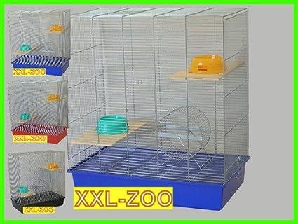 XXL chinc Hilla jaula jaula Degu Rata: Amazon.es: Productos para ...